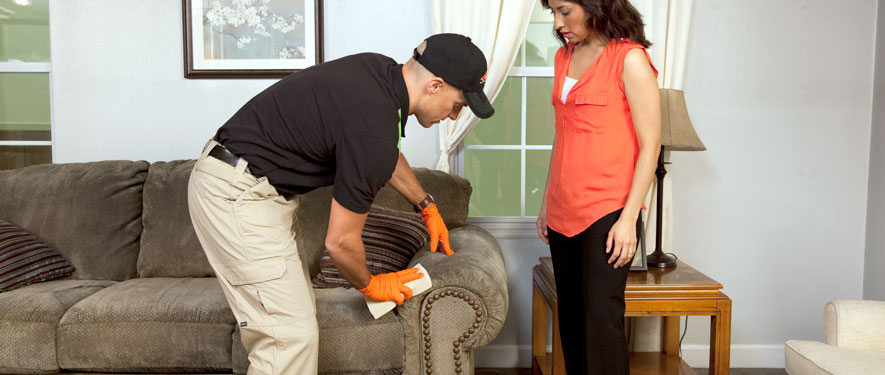 Towson, MD carpet upholstery cleaning