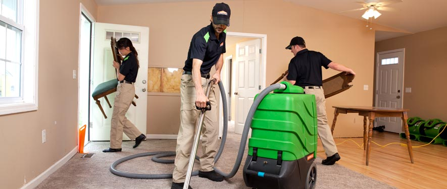 Roland Park, MD cleaning services